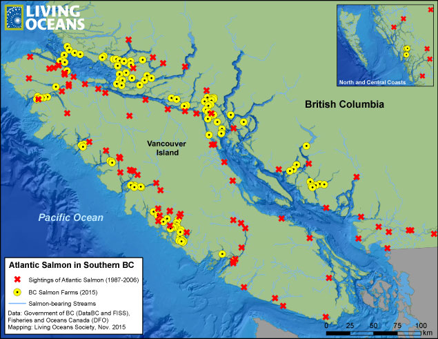 Salmon Farms Out Of Control Living Oceans - Salmon fishing map us
