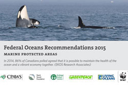 Federal Oceans Recommendations