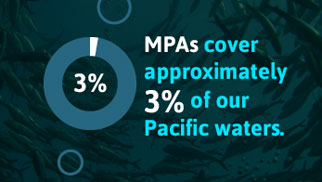 MPAs cover 3% of our Pacific waters