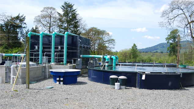 Land-based closed containment tanks
