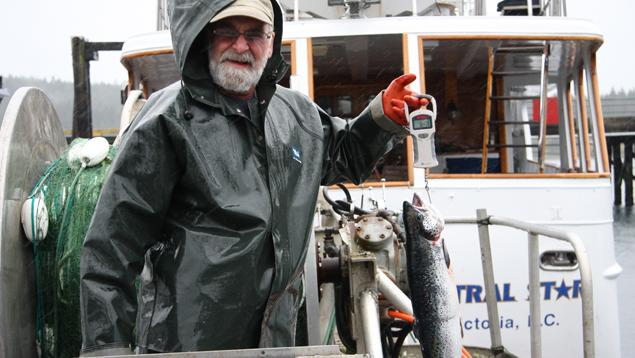 Atlantic salmon caught in Broughton Archipelage