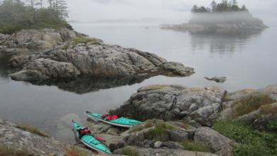 Kayaks in the Broughton Archipelago. Photo: Bridgit Frostad