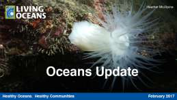 Oceans Update