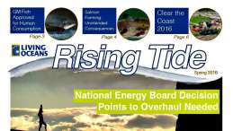Image previewing Rising Tide Newsletter