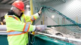 Chief Bill Cranmer at the 'Namgis First Nation closed containment salmon farm